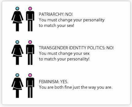 Sex, gender & feminism - FairPlayForWomen.com