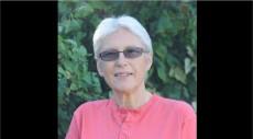 Diane Brewster, academic feminist